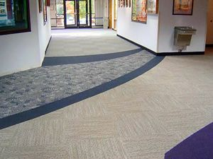 Mighty Mop Carpet Cleaning